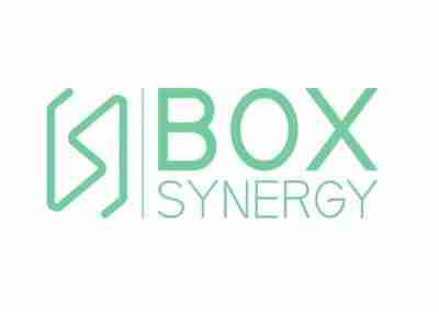 Box Sinergy