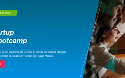 Bayer Startup Bootcamp busca startups con soluciones innovadoras para la industria farmacéutica